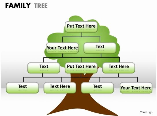 Family Health Tree Template Best Of Style Hierarchy Tree 1 Piece Powerpoint