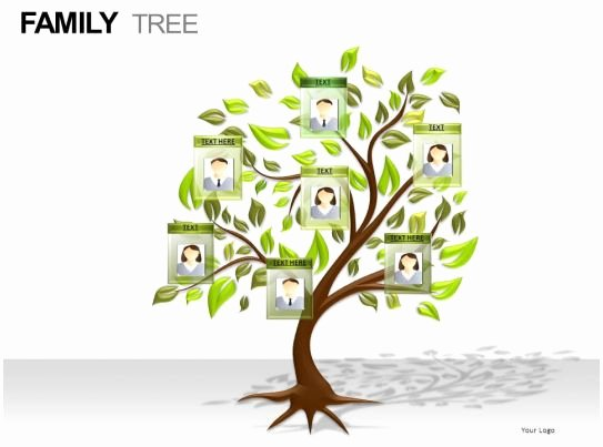 Family Health Tree Template Inspirational Family Tree Powerpoint Presentation Slides
