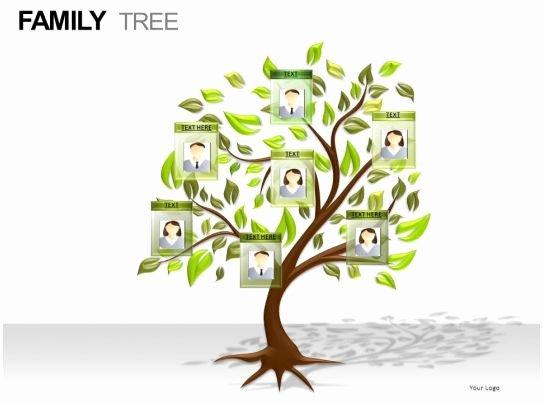 Family Health Tree Template Inspirational Family Tree Powerpoint Presentation Slides