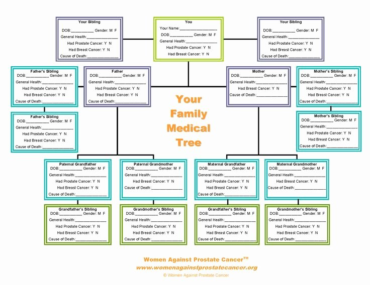 Family Health Tree Template Lovely Family Tree forms Pedigree Chart
