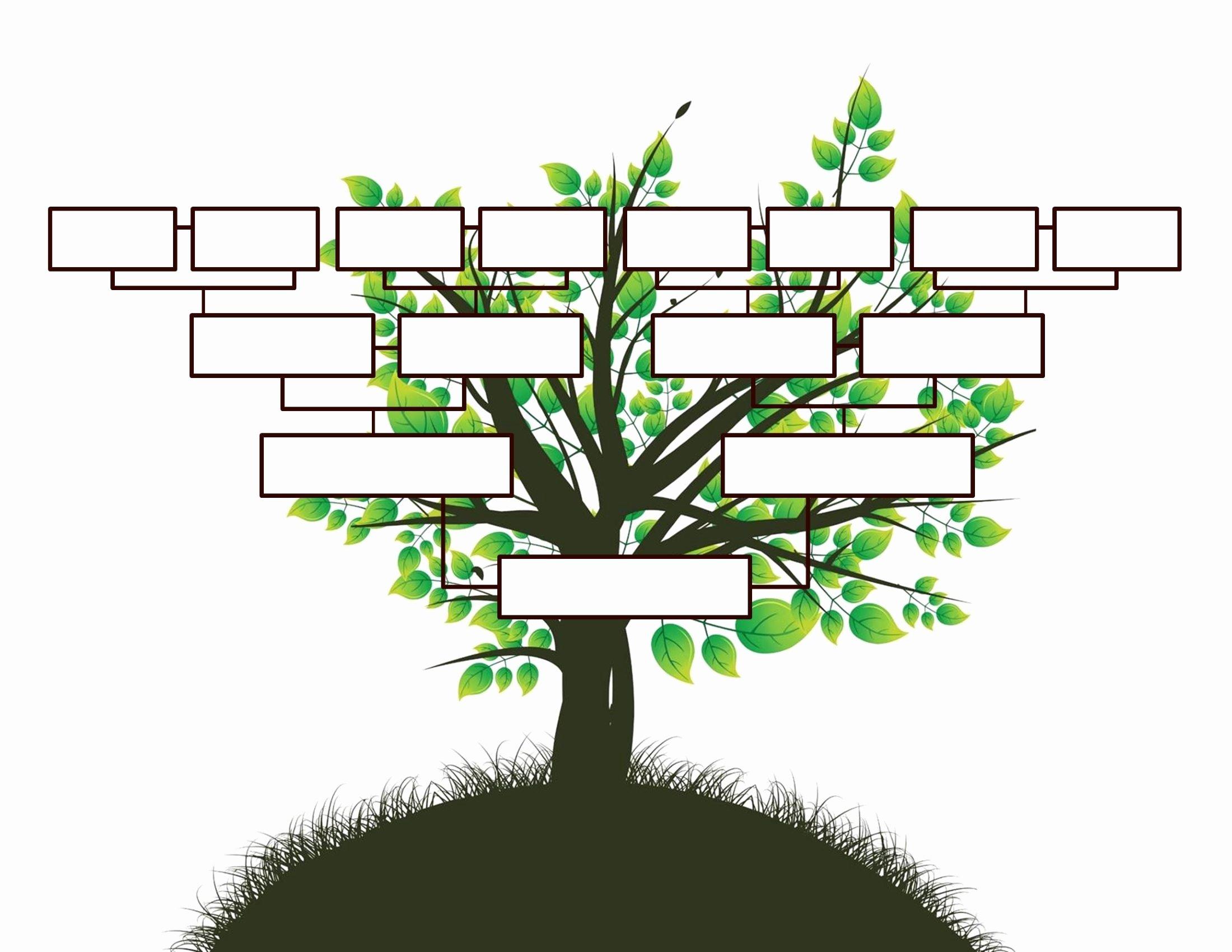 Family Health Tree Template Lovely Free Editable Family Tree Template Daily Roabox