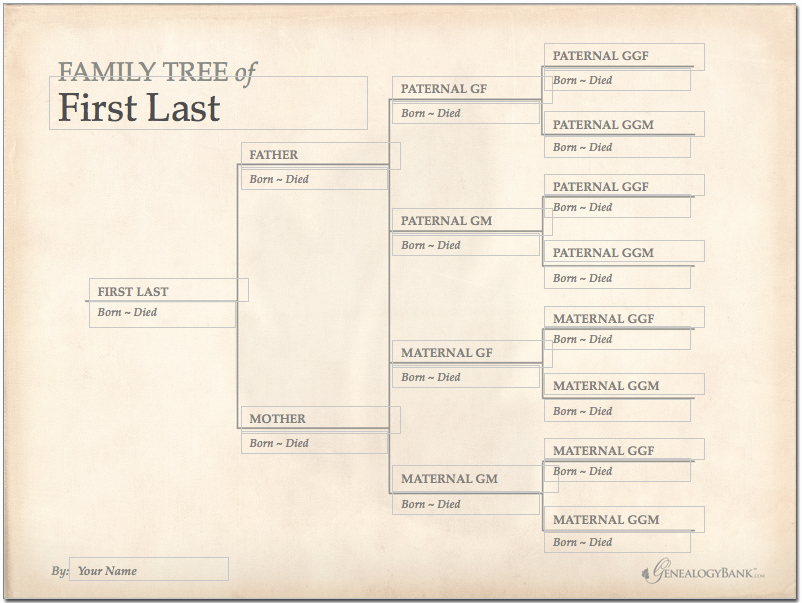 Family Tree Chart Template Beautiful Family Tree Template Finder Free Charts for Genealogy