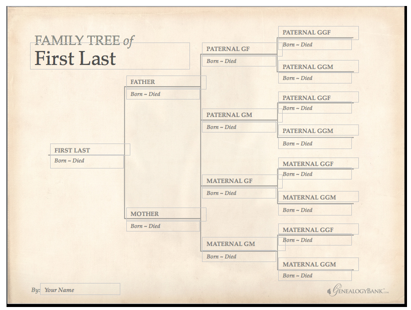 Family Tree Chart Template Luxury Family Tree Template & How to Get Started