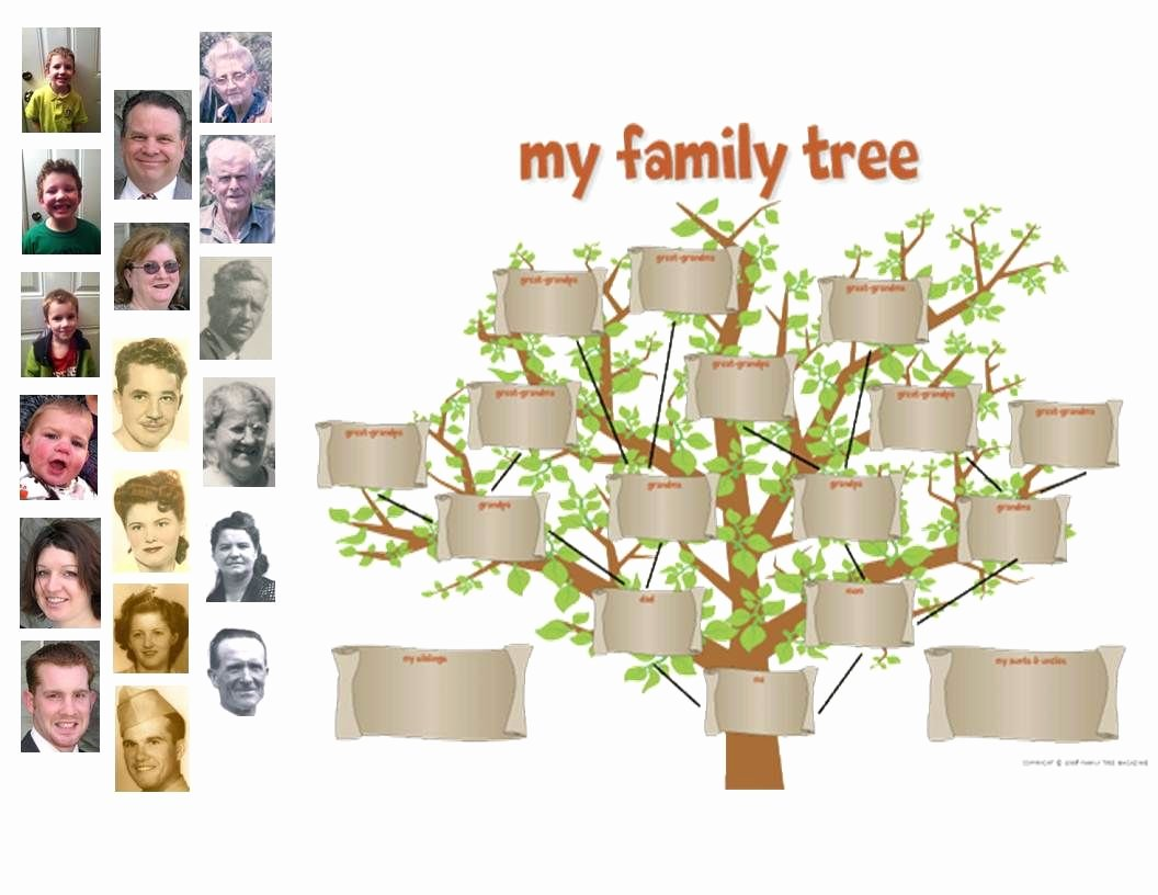 Family Tree Cut Out Best Of Cut Out A Family Tree Template and Tape It to Your