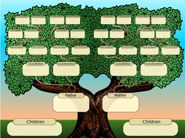 Family Tree Designs Templates Awesome 25 Best Ideas About Tree Templates On Pinterest
