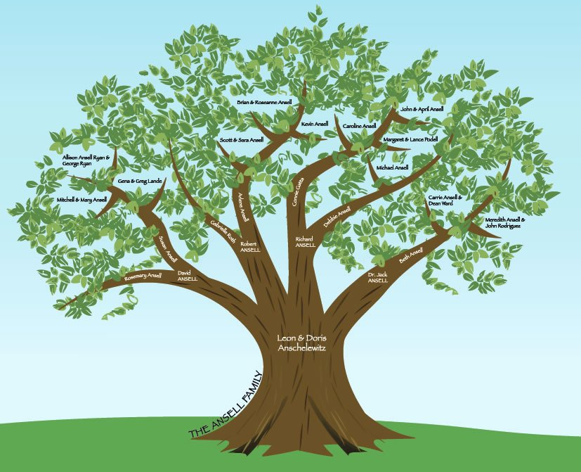 Family Tree Designs Templates Beautiful Family Tree Created In Illustrator