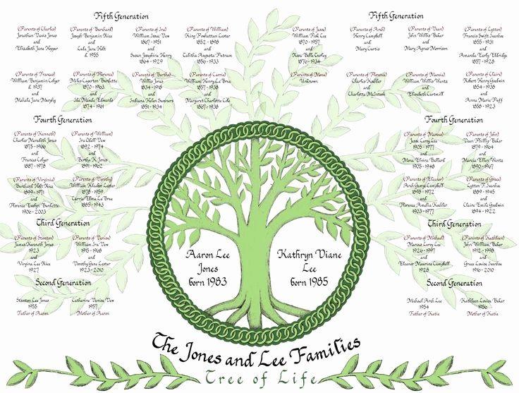 Family Tree Designs Templates Fresh 8 Best Family Tree Images On Pinterest