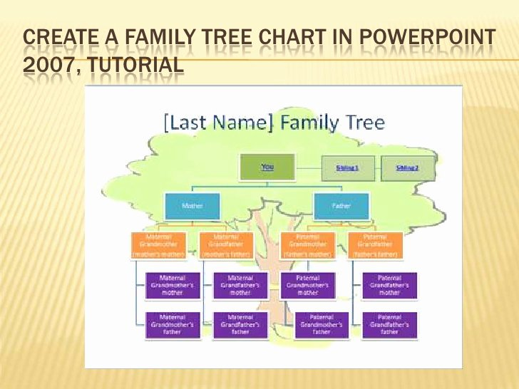 Family Tree How to Make Fresh 6 Ict Tutorial Create A Family Tree Chart In Power Point 2007
