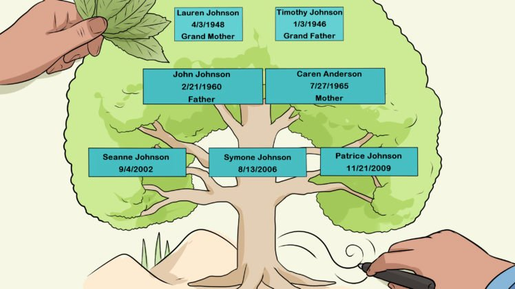 Family Tree How to Make Lovely Everything You Need to Know About Family Trees and How to