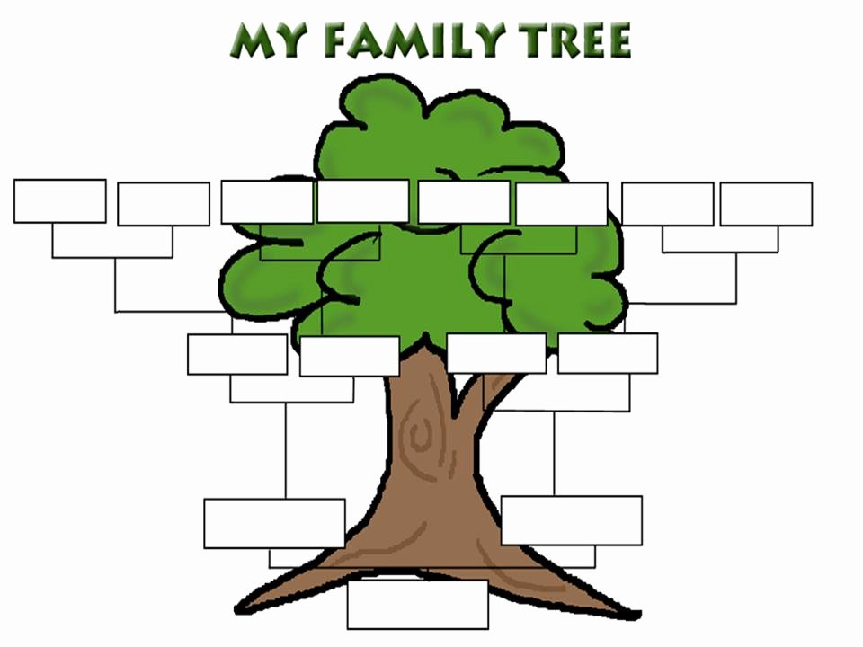 Family Tree How to Make Lovely the Ossington Kitchen Growing Your Family Tree