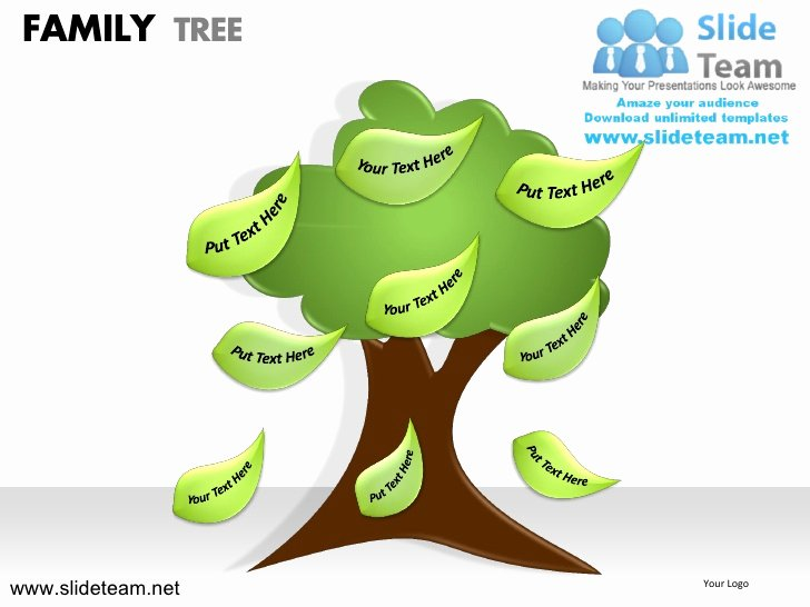 Family Tree How to Make Unique How to Make Create Geneology Family Tree Powerpoint