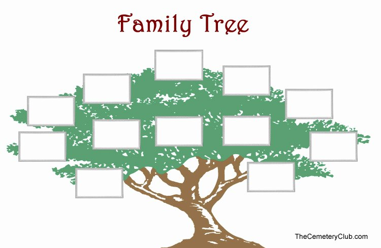 Family Tree Images to Print Lovely Free Printable Family Tree Images orig Printable