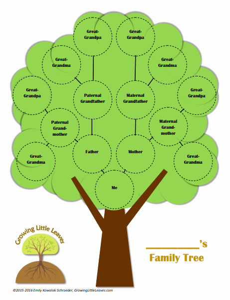 Family Tree Poster Template Luxury Family Tree Chart Templates