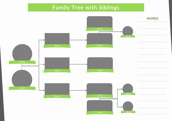 Family Tree Template Doc Awesome 9 Family Tree Template with Siblings Pdf Doc
