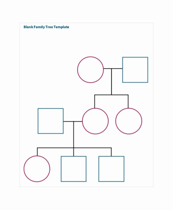 Family Tree Template Doc Beautiful Family Tree Template 8 Free Word Pdf Document