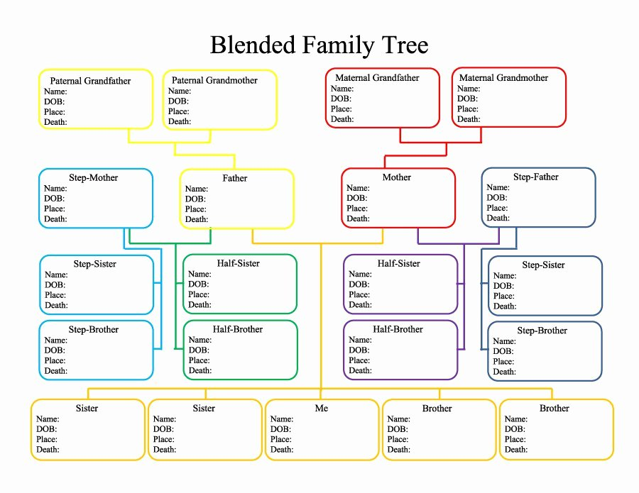 Family Tree Template Microsoft Office Awesome Printable Family Tree with Siblings Printable Pages