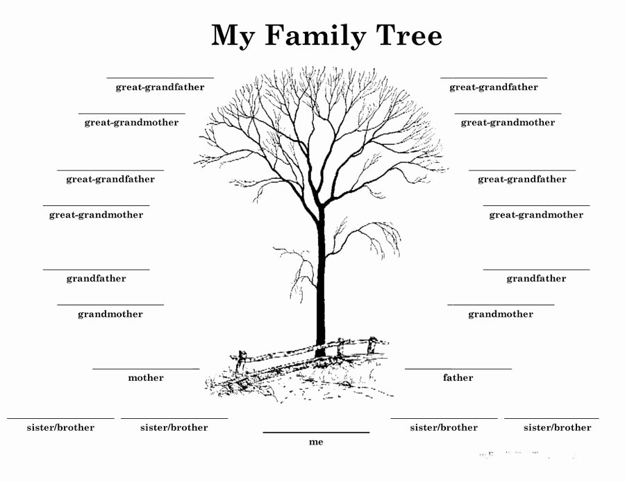 Family Tree Template Microsoft Office Elegant Printable Family Tree with Siblings Printable Pages