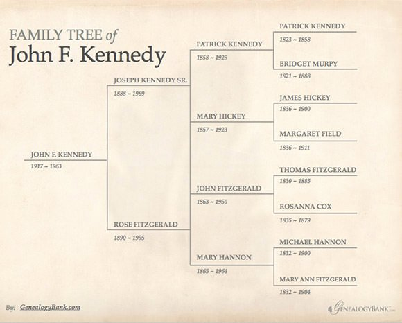 Family Tree Template Microsoft Office Fresh Free 56 Family Tree Templates In Word Apple