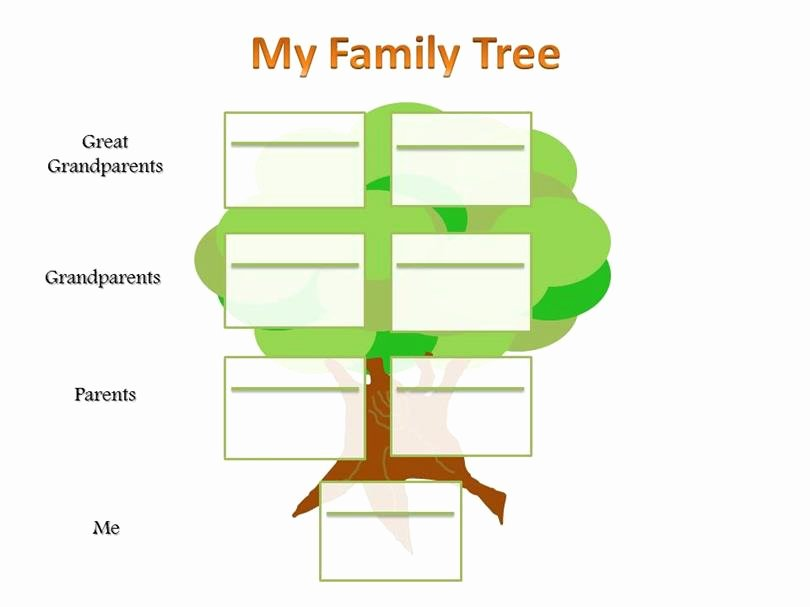 Family Tree Templates Free Online Beautiful where Can You Find A Family Tree Template
