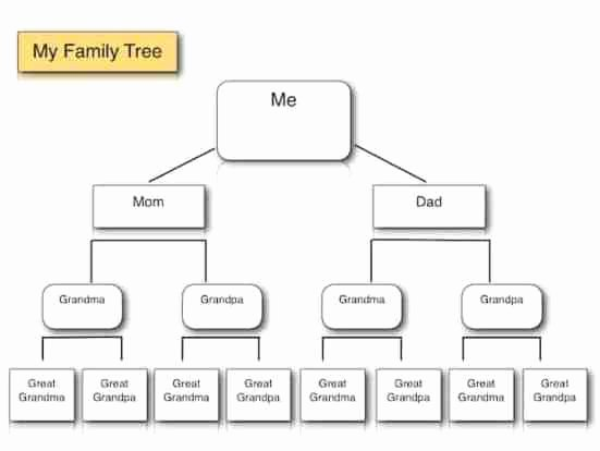 Family Tree Templates Free Online Luxury Family Tree Templates Find Word Templates