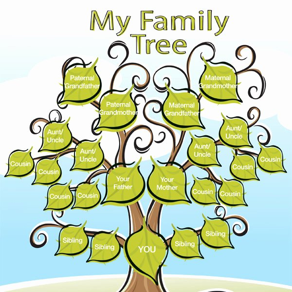 Family Tree Templates In Spanish Beautiful Cute Printable Family Tree