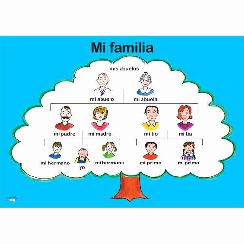 Family Tree Templates In Spanish Fresh Mi Familia Tree Poster Family Spanish