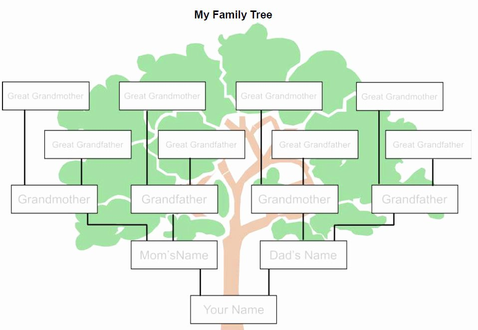 Family Tree Templates In Spanish Unique Genealogy Requirements and Non Traditional Families
