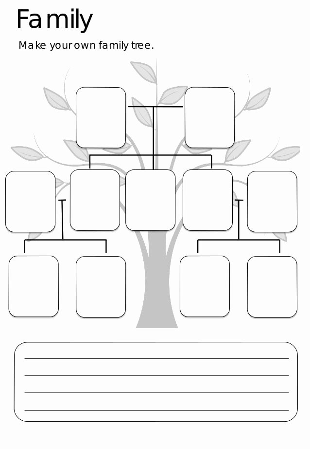 Family Tree Worksheet Printable Beautiful Best 25 Family Tree Worksheet Ideas On Pinterest