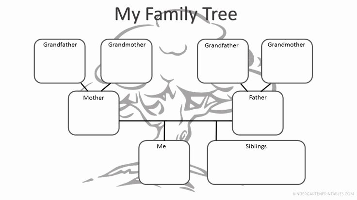 Family Tree Worksheet Printable Best Of Best 25 Family Tree Worksheet Ideas On Pinterest