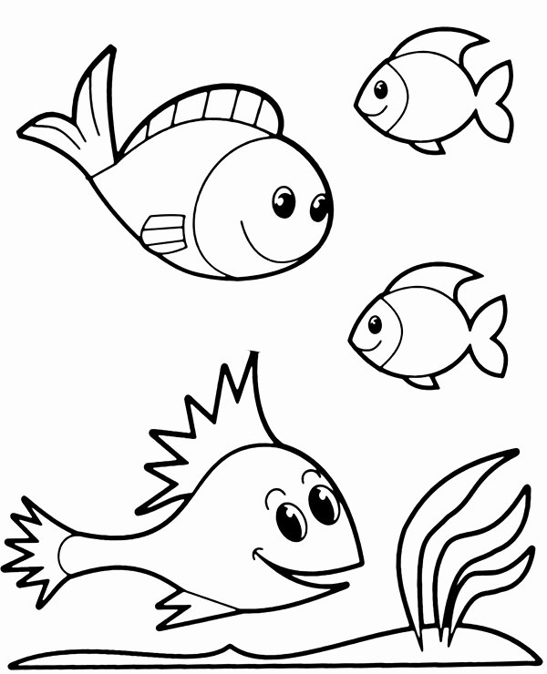 Fish Pictures to Print Awesome Four Fish Coloring Printables to Print or