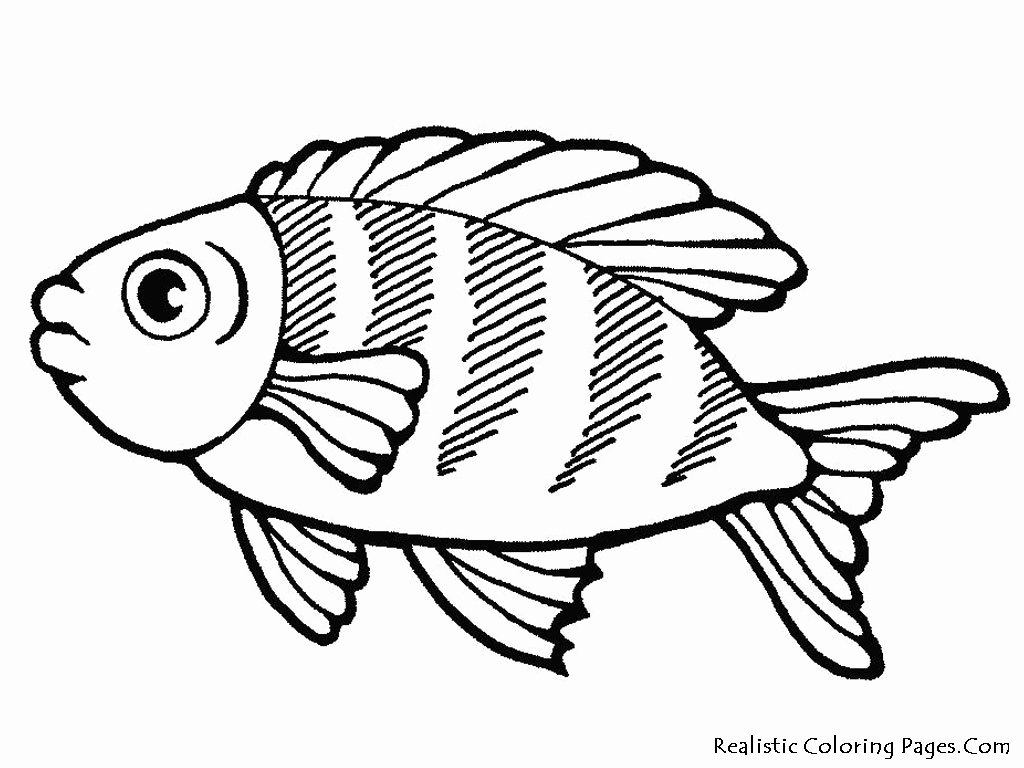 Fish Pictures to Print Lovely Sea Life Coloring Pages