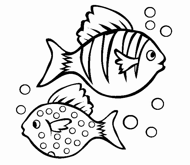 Fish Pictures to Print New 39 Fish Templates
