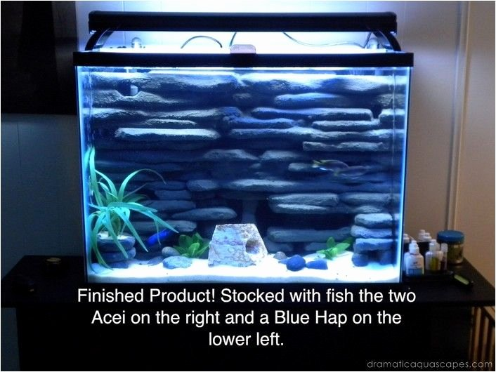 Fish Tank Background Ideas Best Of 53 Best Fishy Tank Images On Pinterest