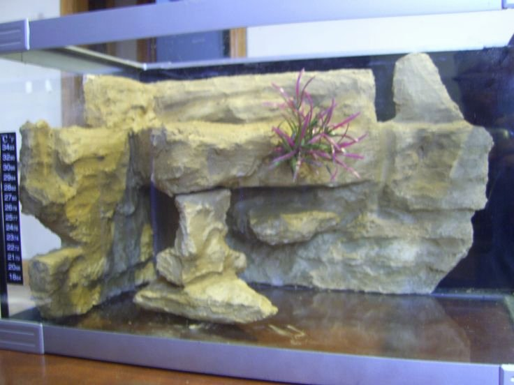 Fish Tank Background Ideas New 1000 Ideas About Aquarium Backgrounds On Pinterest