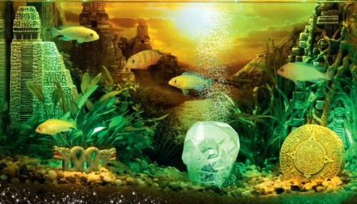 Fish Tank Background Ideas Unique Hydor H2show Lost Civilization Background with Application