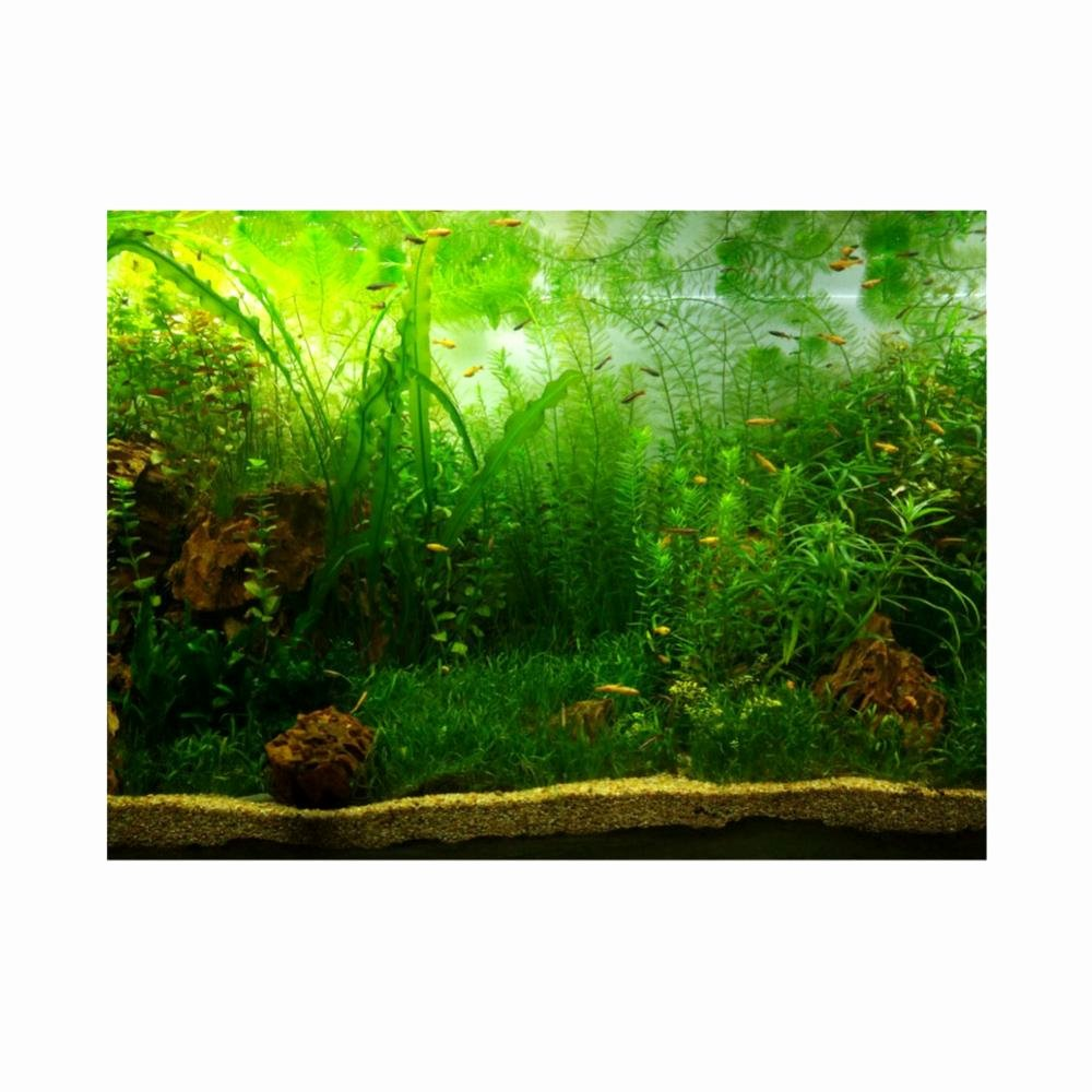 Fish Tank Background Paper Luxury Star Dust Galaxy Aquarium Background Poster Fish Tank