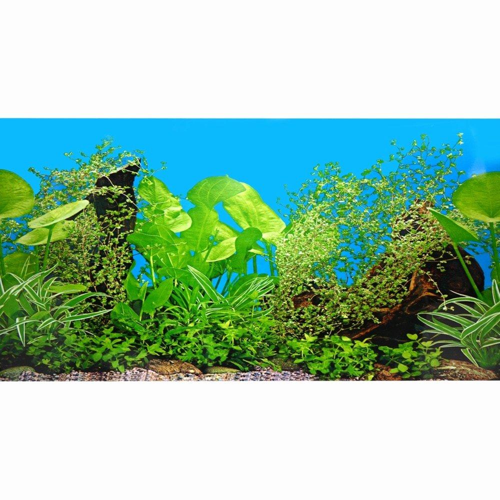 Fish Tank Background Paper Unique Aquarium Fish Tank Beautiful Grass Sticker 2017 Aquarium