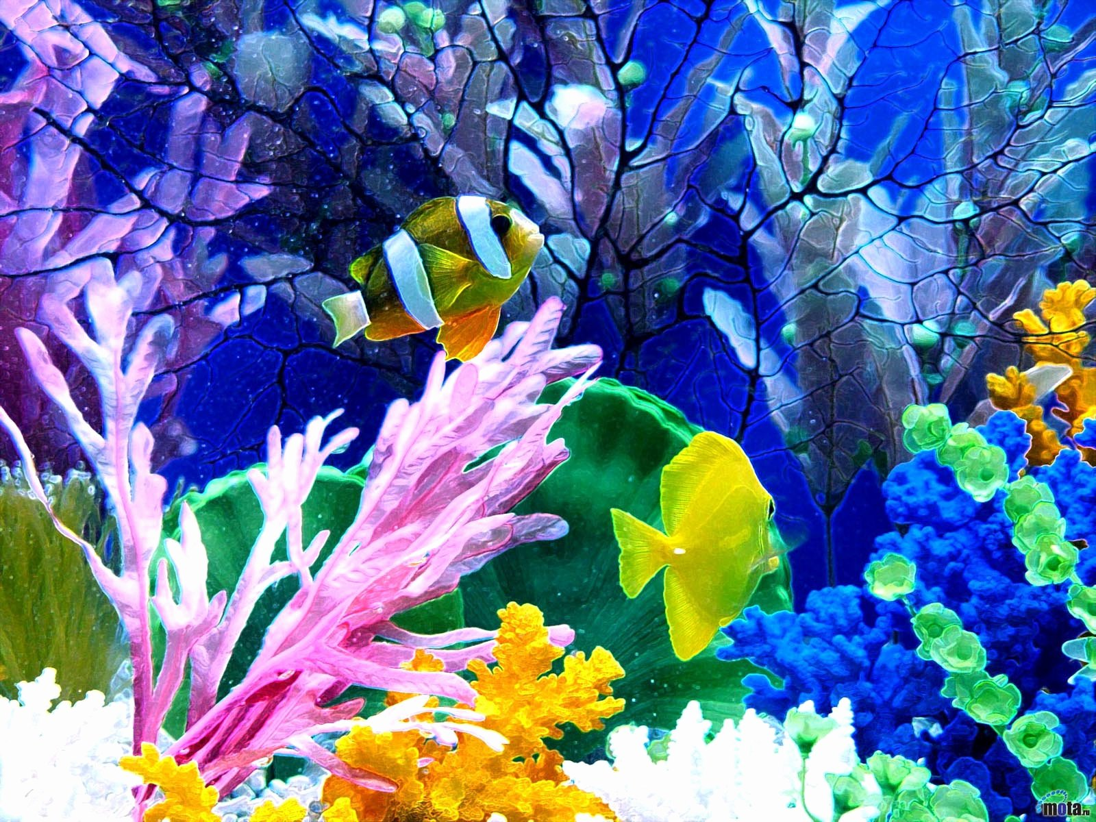 Fish Tank Background Pictures Beautiful 33 attractive Aquarium Background – Technosamrat