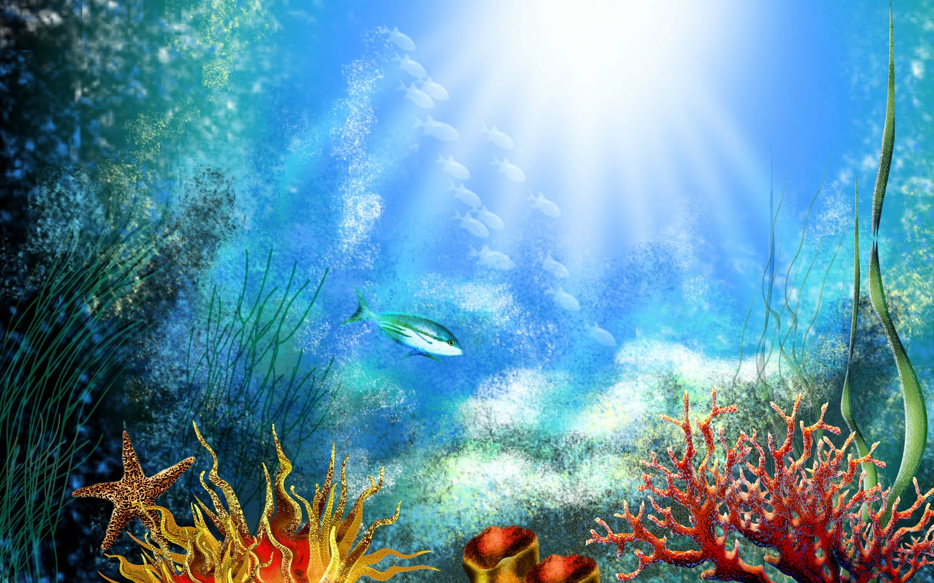 Fish Tank Background Pictures Beautiful Fish Tank Backgrounds