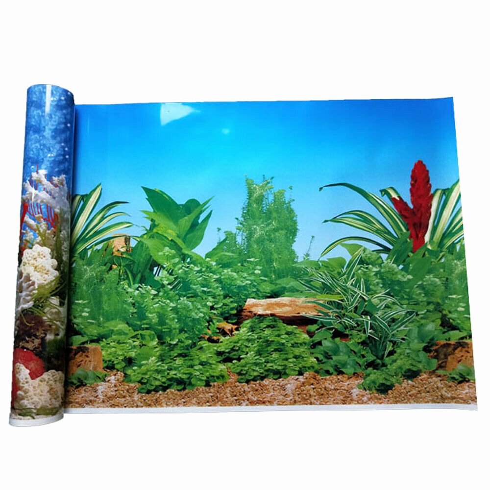 Fish Tank Background Pictures Elegant Double Sided Aquarium Fish Tank Background Poster Reptile