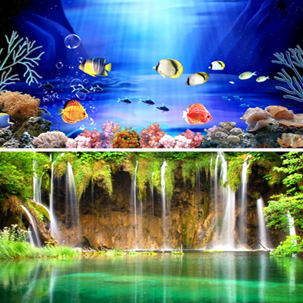 Fish Tank Background Printable Lovely Wow Double Sided Aquarium Poster Background Fish Tank