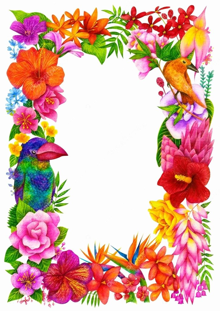 Flower Background Design Images Best Of Tropical Frame Certificate or Diploma Of Pletion