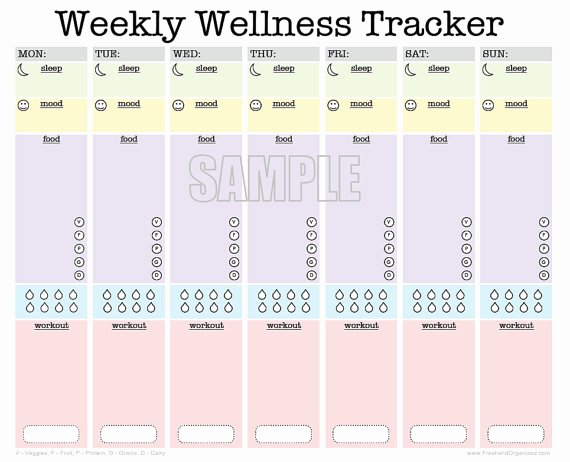 Food and Activity Log Best Of Weekly Wellness Tracker Fillable Workout Planner