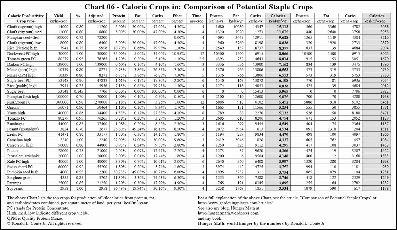 Food and Calories Chart Fresh Food Calorie Chart