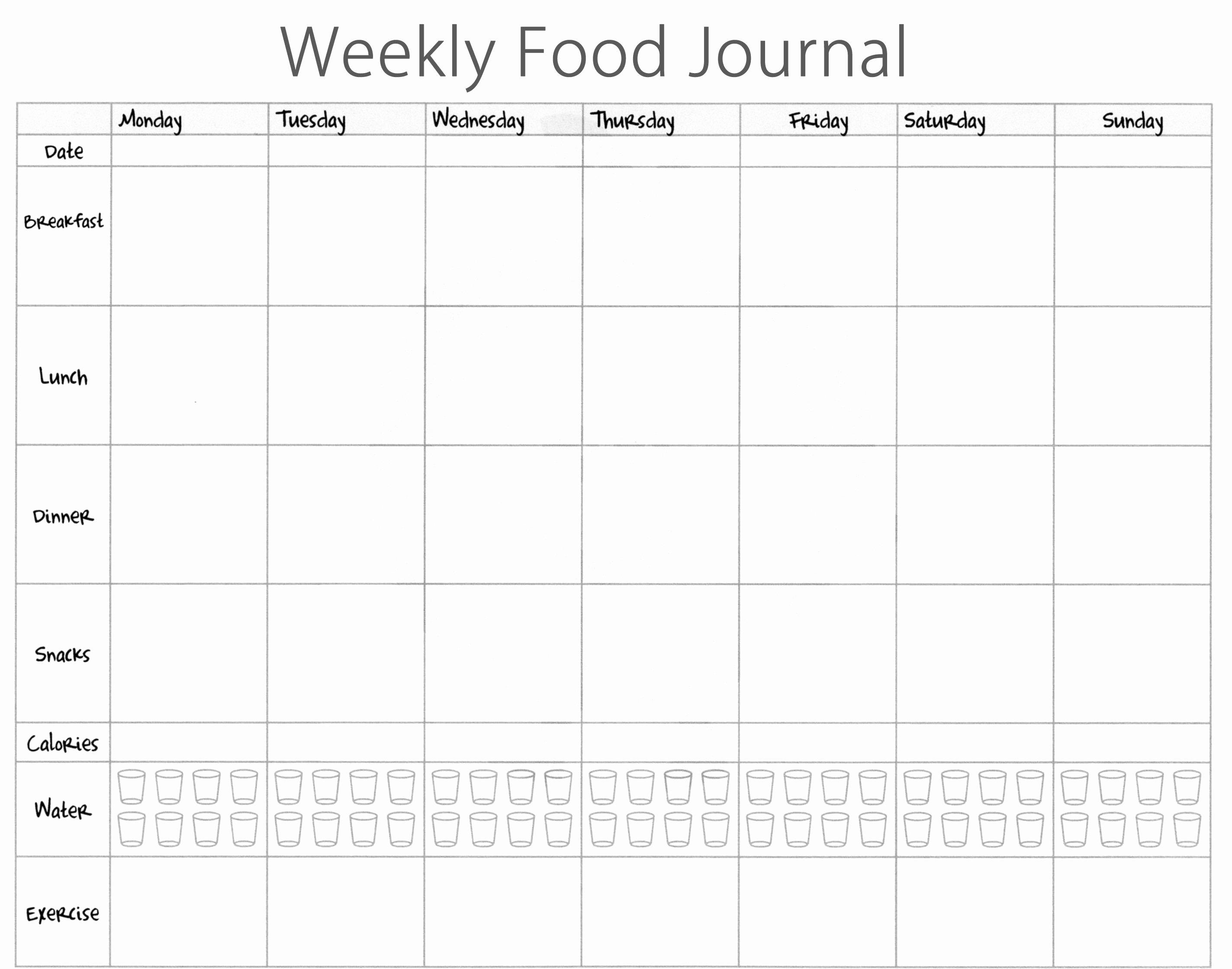 Food Diary Template Word Awesome Food Journal Template Excel