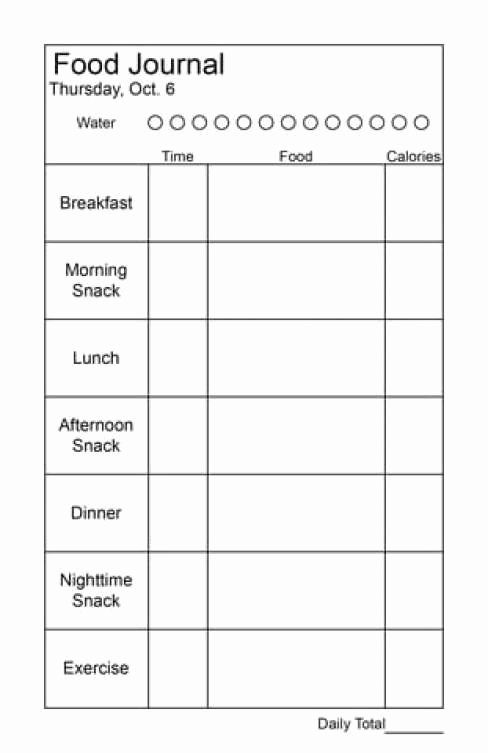 Food Diary Template Word Inspirational 21 Free Food Journal Template Word Excel formats