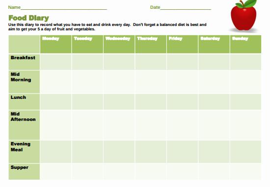 Food Diary Template Word Inspirational 9 Food Journal Templates Pdf Docs Word