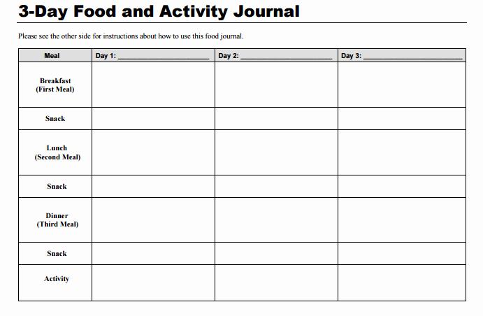 Food Diary Template Word Luxury 9 Food Journal Templates Pdf Docs Word