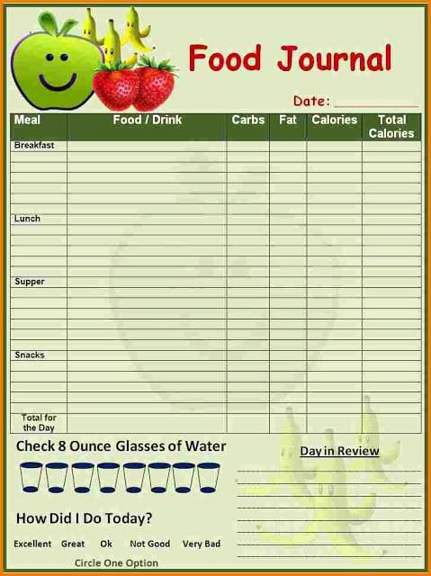 Food Diary Template Word New Daily Food Diary Template for Kids