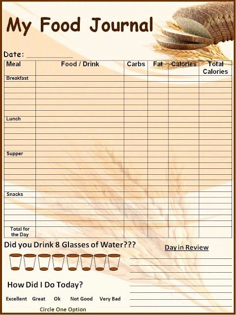 Food Diary Template Word New Food Log Template Printable In Excel format Excel